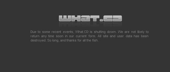 what_cd-mesaj-final