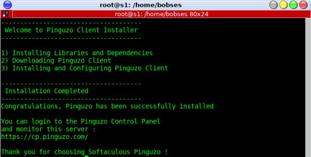 install-pinguzo-client