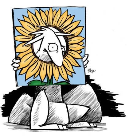 Bob the Squirrel and Sunflower sunshine