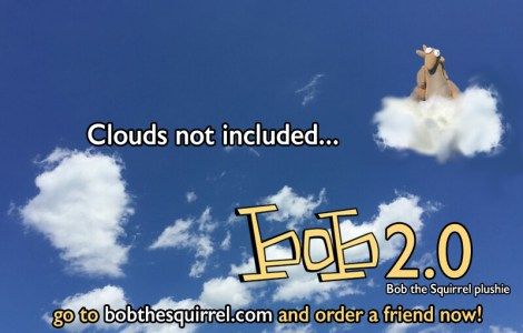 bob2-0_sky_800