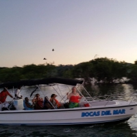 Sundown & Mangroves Boat Trip
