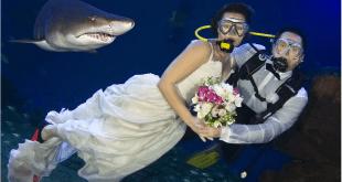 Video de una boda extraña