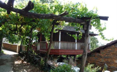 Bodega Viña Cuedo: Panera en Ibias