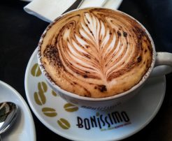 Bodhi Tree Bookstore Cafe | Coffee
