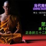 《當代南傳佛教大師》第十章 唐卜陸西亞多 TAUNGPULU SAYADAW