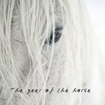 2014 – The Year of the Yang Wood Horse