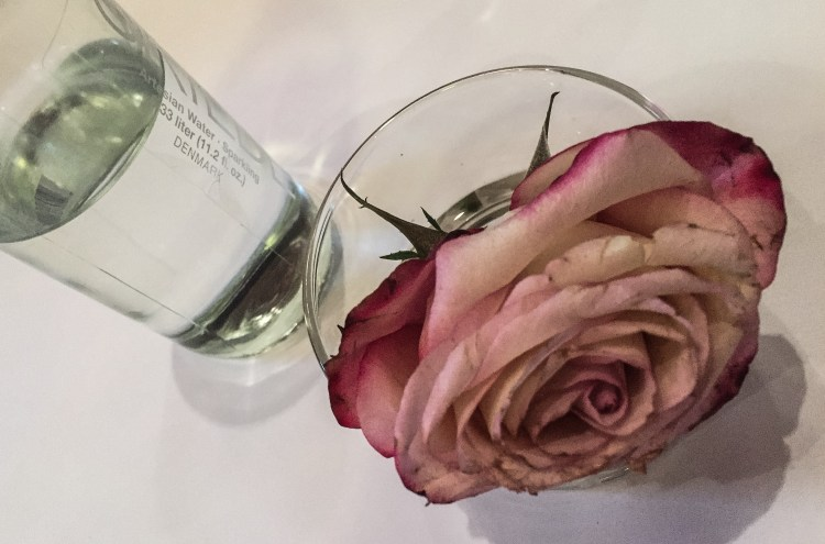 a-rose-and-a-bottle-of-water
