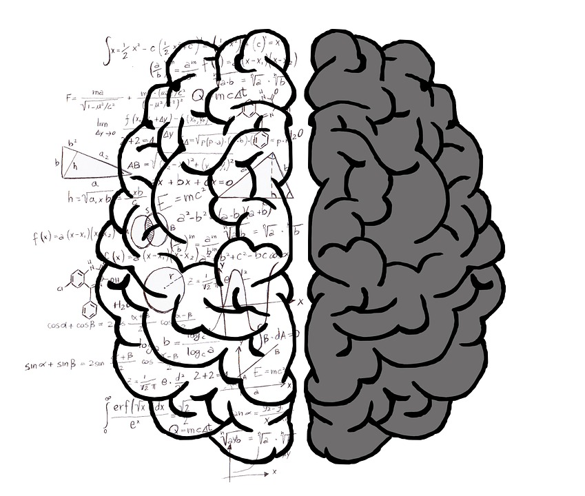 left-brain-rationaity