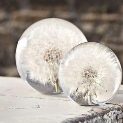 Kitchen Signs For Home Modern Chimney Dandelion-paperweight--65cm-diameter_pwys-papur-dant-y ...