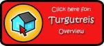 Overview-Turgutreis logo copy