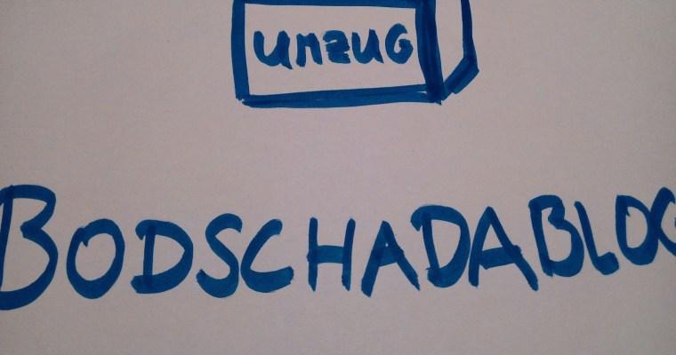 Umzug zu bodschadablog.de