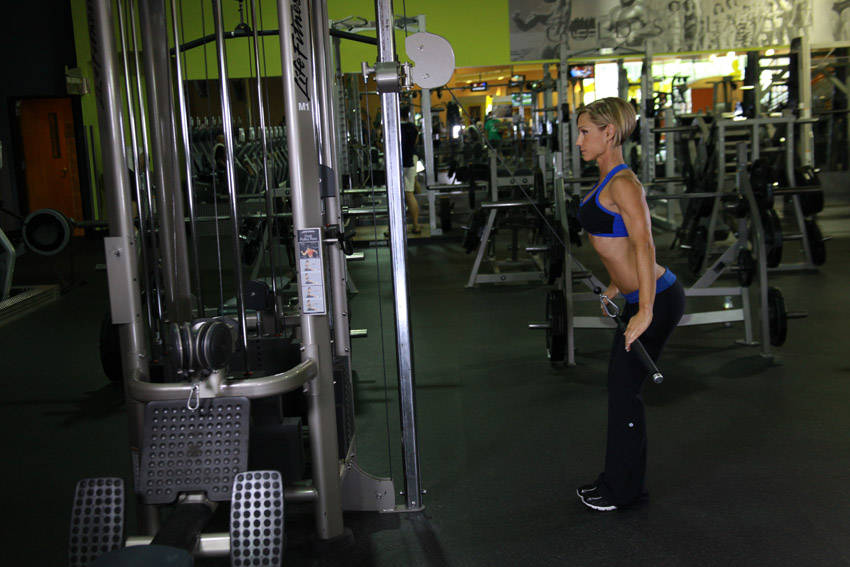 StraightArm Pulldown Exercise Guide and Video