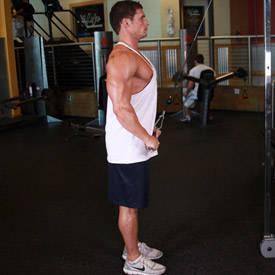 Straight-Arm Pulldown
