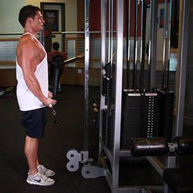 Bíceps Curl Permanente por cable