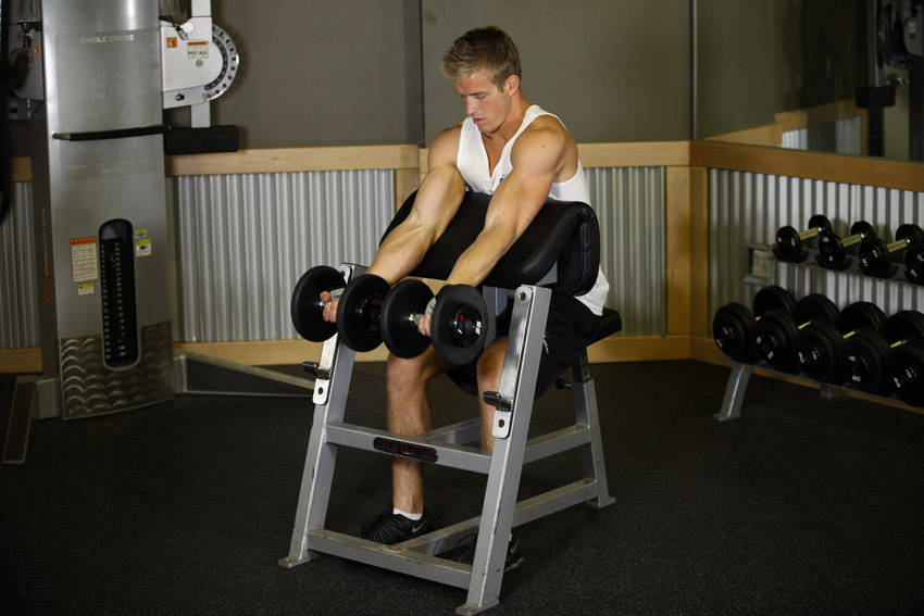 Two Arm Dumbbell Preacher Curl Exercise Guide And Video