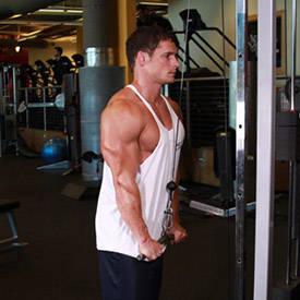 tríceps Pushdown
