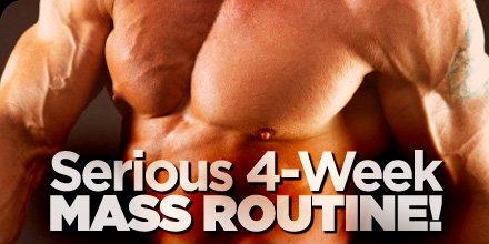 Chest workout plan mass