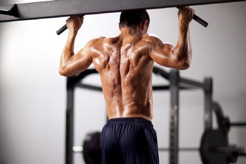 When You Are Looking For A Quality Workout, Compound Exercises Help You Do More In Less Time.