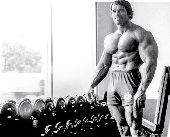 Arnold schwarzenegger the greatest bodybuilder of all time take arnold trained shoulders with the same high volume approach he employed with other body parts ensuring that each deltoid head was targeted from different malvernweather Image collections