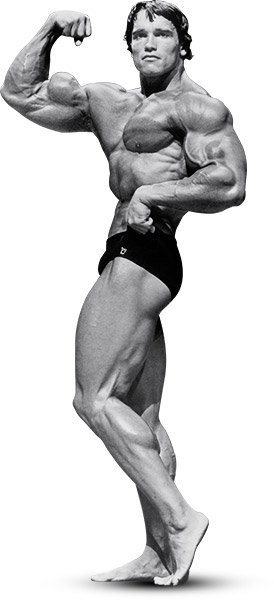 Arnold schwarzenegger the greatest bodybuilder of all time arnold went heavy with presses and upright rows especially early in his workouts when his energy levels were highest multijoint movements like these are malvernweather Choice Image