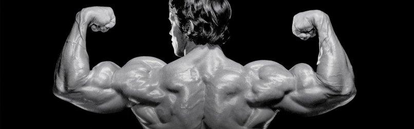 Arnold schwarzenegger workout plan cut yourviewsite arnold schwarzenegger s blueprint to cut day 6 malvernweather Image collections