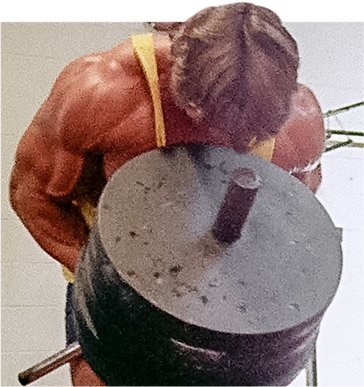 Arnold blueprint chest back workout yourviewsite arnold schwarzenegger blueprint trainer mass training overview malvernweather Image collections
