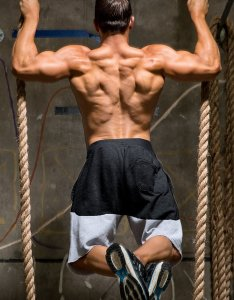 also back workouts for mass  beginner   guide rh bodybuilding