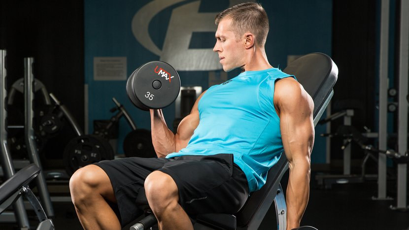 Arm Best Exercises Size