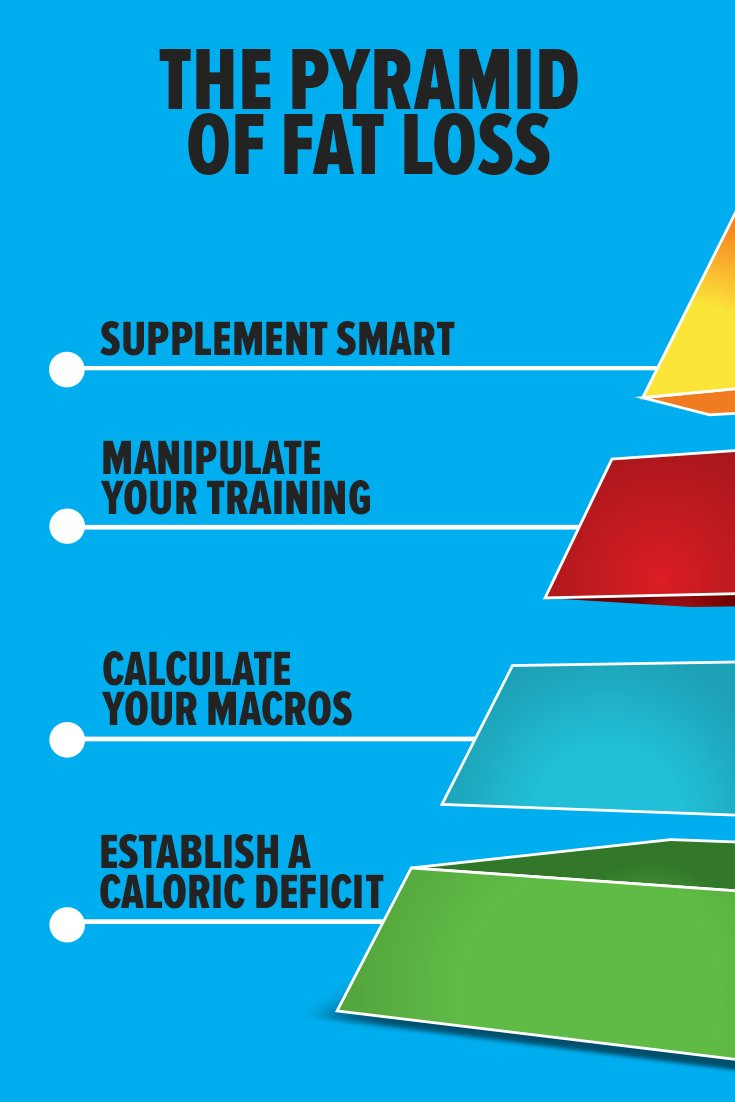 The Pyramid Of Fat Loss Bodybuilding Com
