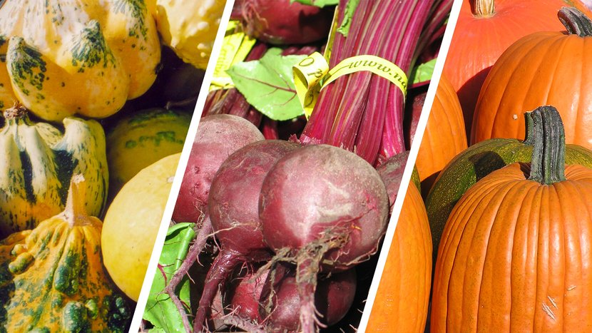 3 Fall Vegetables That Can Boost Your Gym Performance!