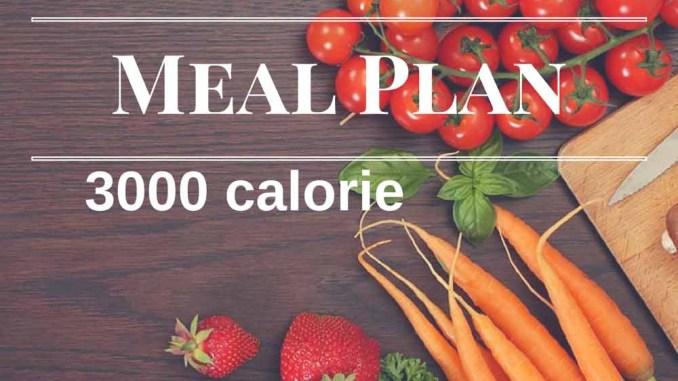 3000 Calorie Meal Plan