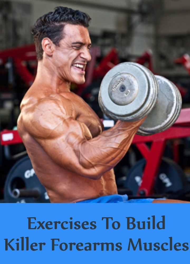 Exercises To Build Killer Forearms Muscles