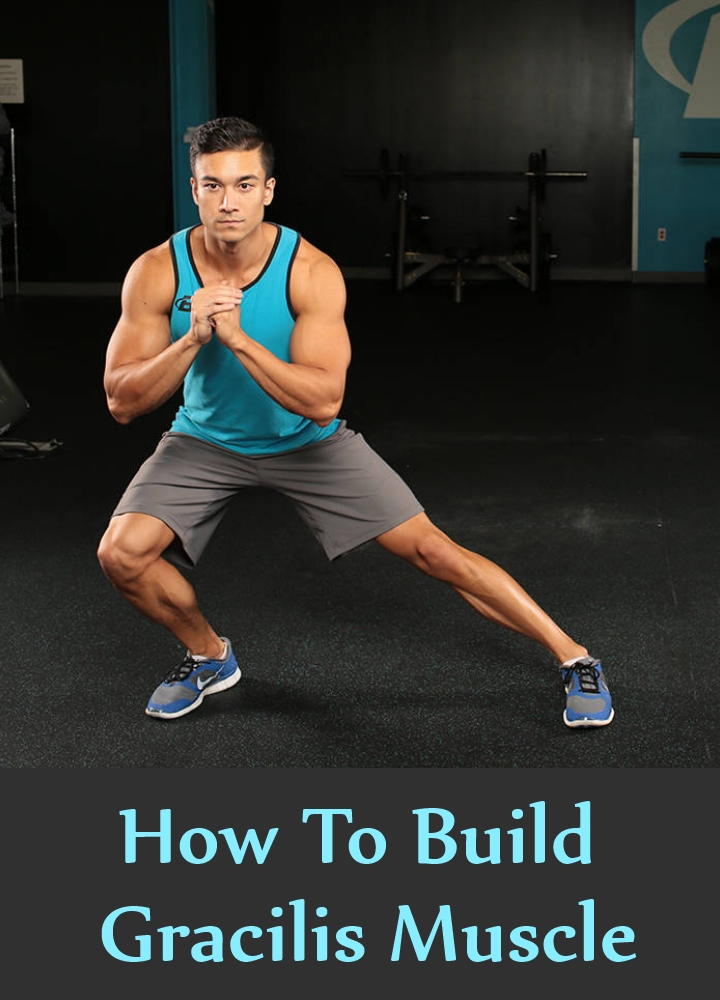 How To Build Gracilis Muscle