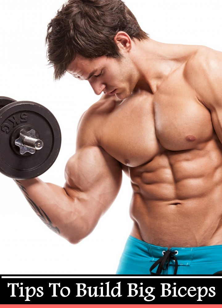 5 Tips To Build Big Biceps
