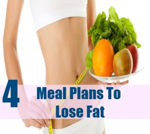 Meal Plans To Lose Fat