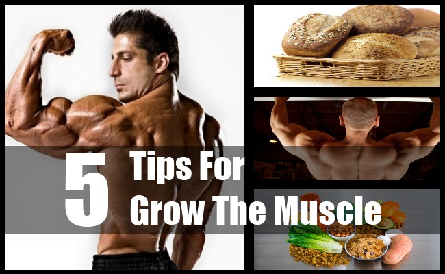 Grow The Muscle