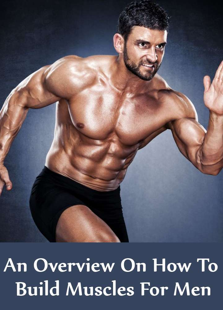 An Overview On How To Build Muscles For Men