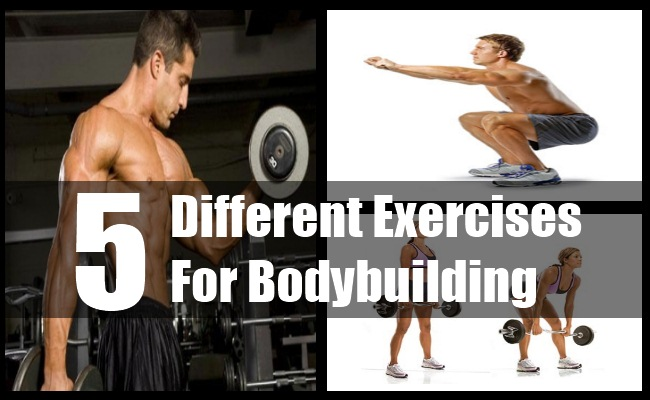 Exercises For Bodybuilding