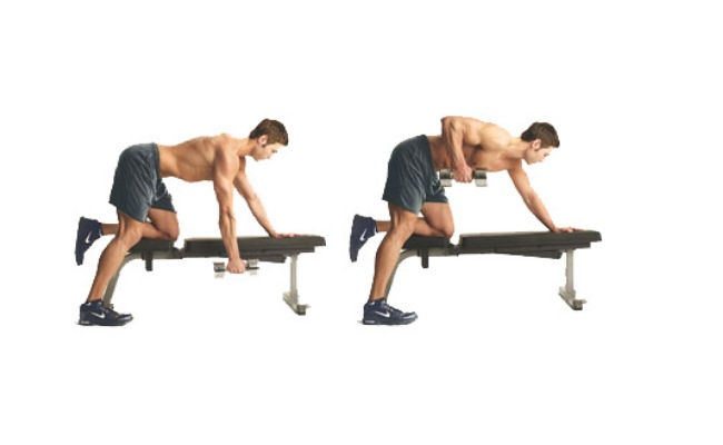Horizontal Row With Dumbbells