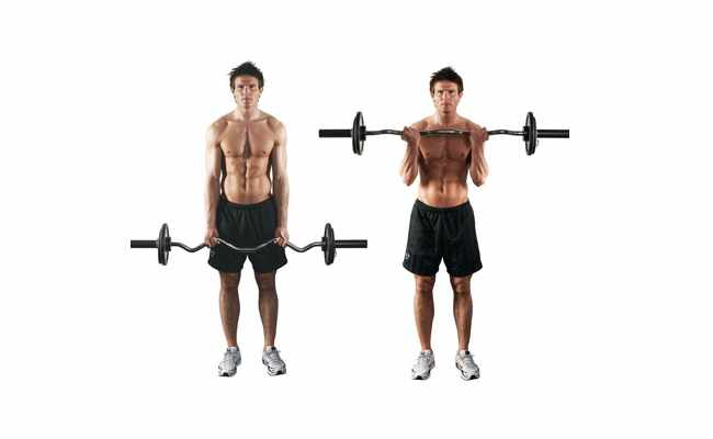 Reverse Grip Curls With Bar