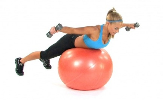 Exercise Ball Flyes