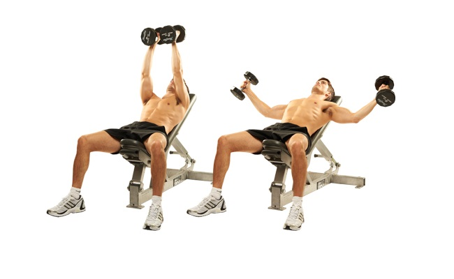 Flat Bench Flyes With Dumbbells 2