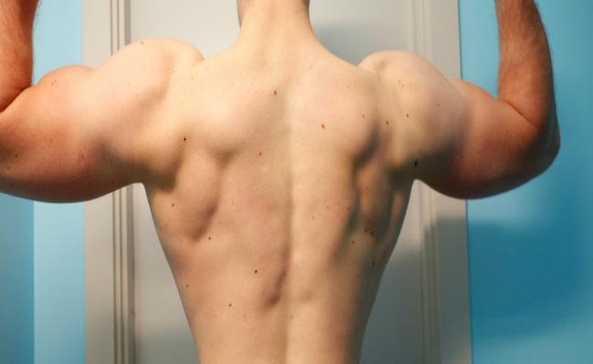 Robust Upper Back