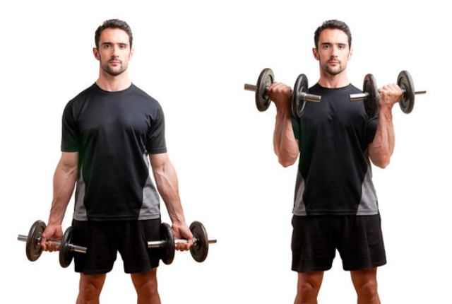 Standing Dumbbell Curls