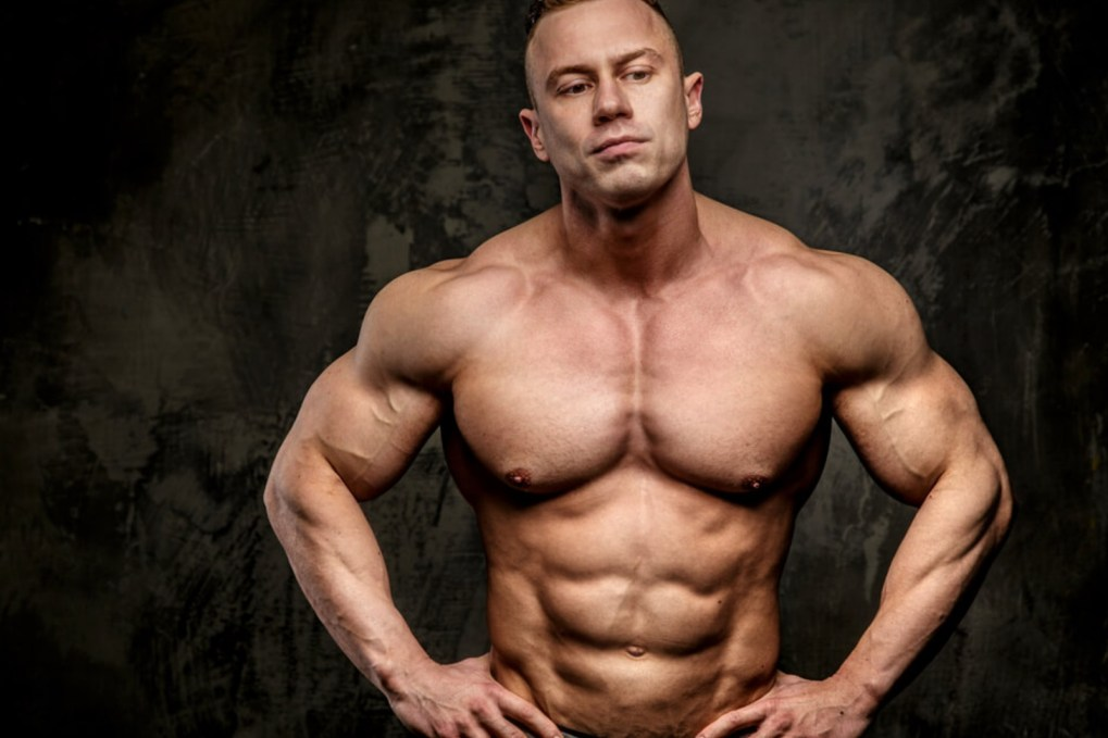 4 Best Intermediate Chest Workout to Build-up Muscles ...