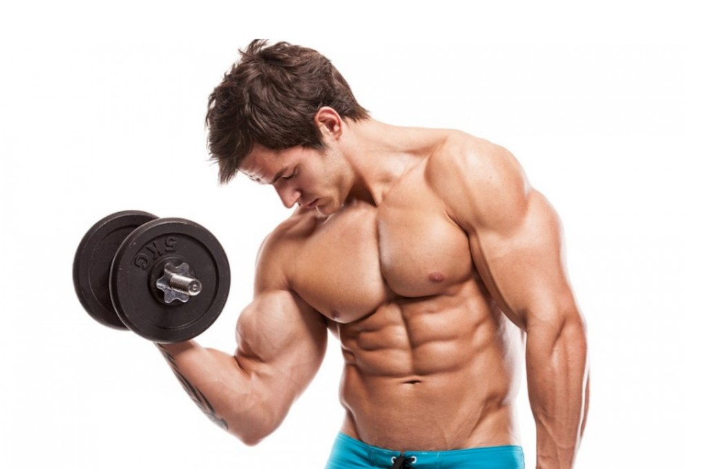 6 Exercises For Oblique Muscles For Body Builders | BodyBuilding eStore