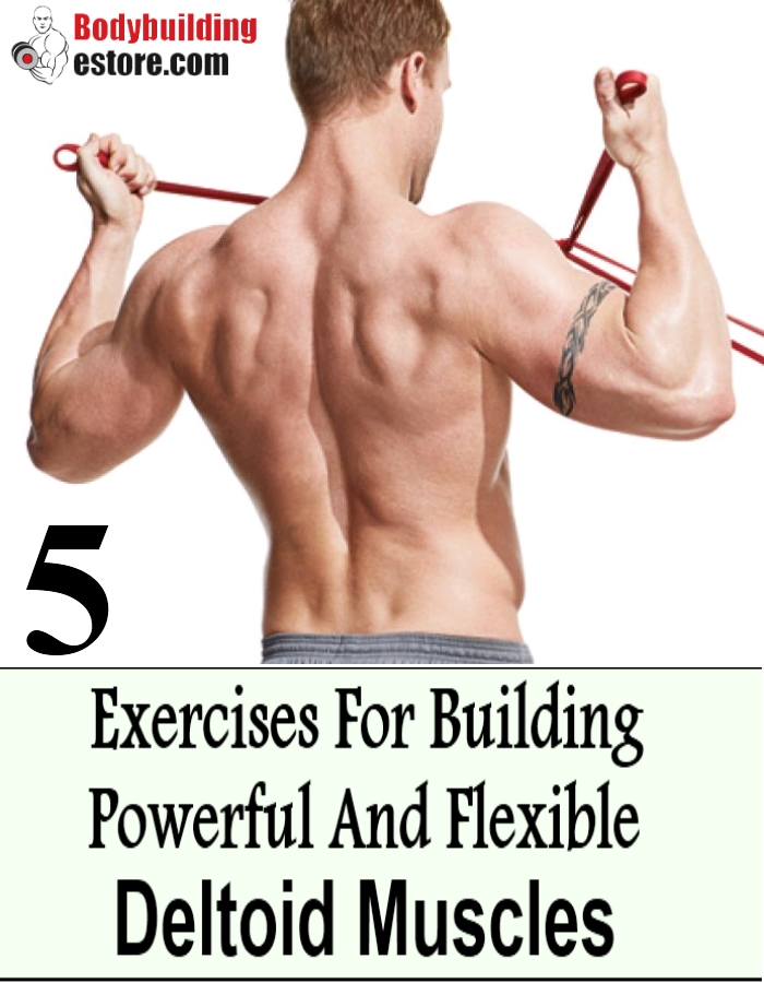 5 Exercises For Building Powerful And Flexible Deltoid Muscles