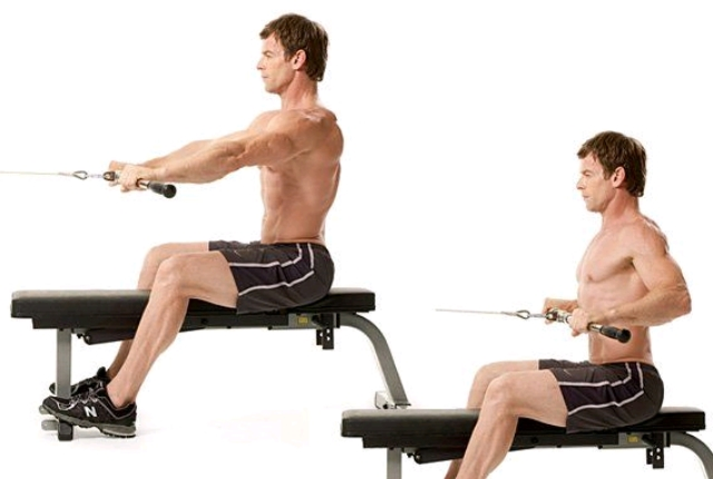 Transverse Cable Row