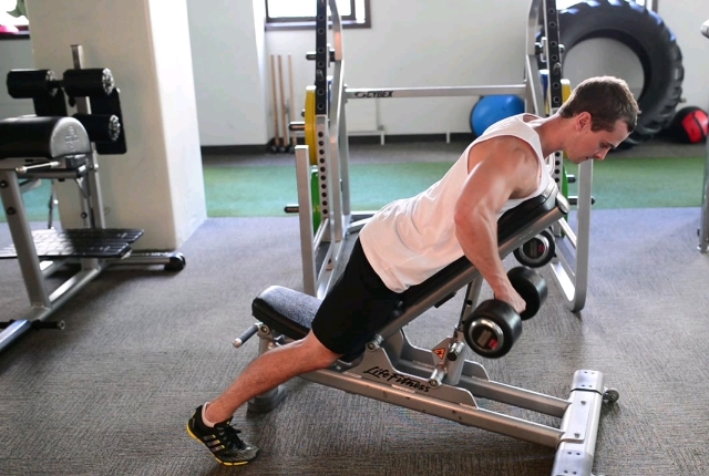 Dumbbell Chest Supported Row