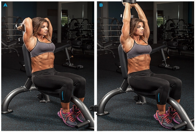 Tricep Extensions Overhead